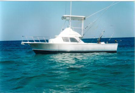 Fishing cozumel playa del carmen riviera maya for Cozumel fishing charters